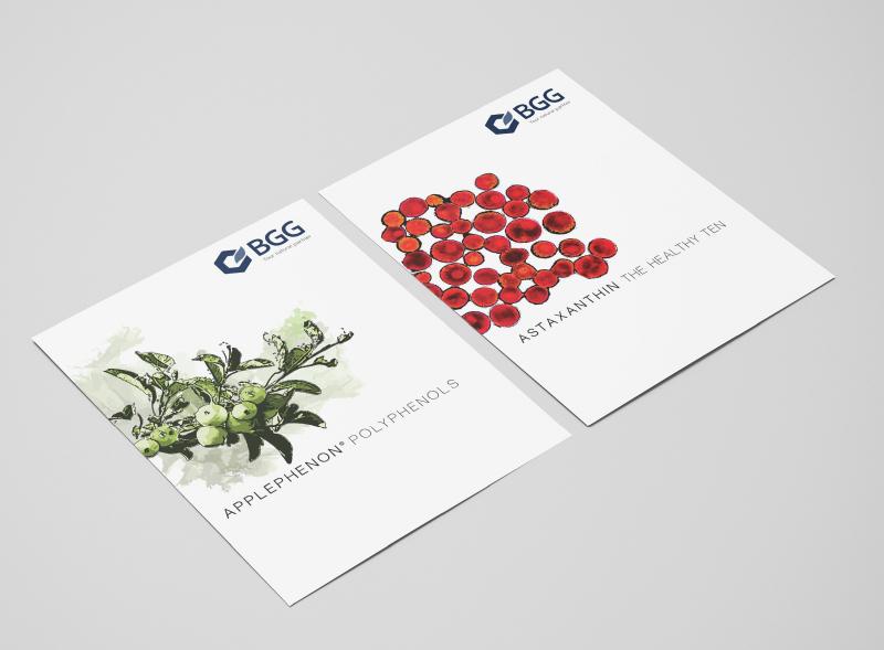 bgg_brochure