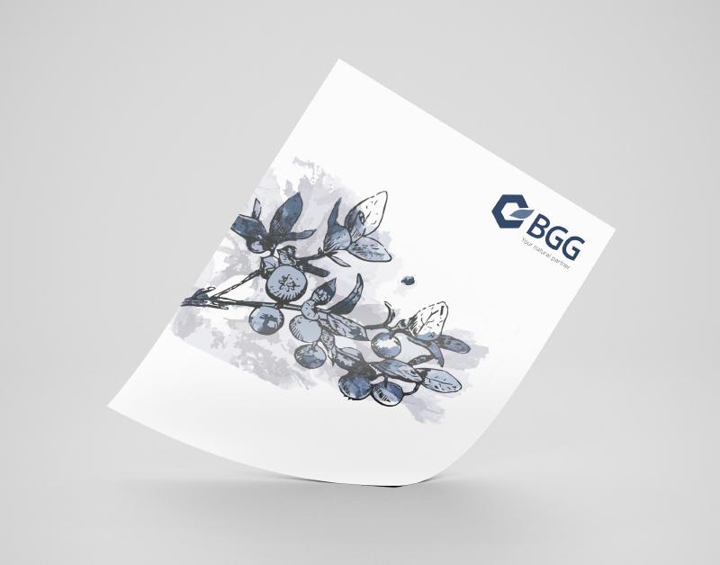 bgg_leaflet