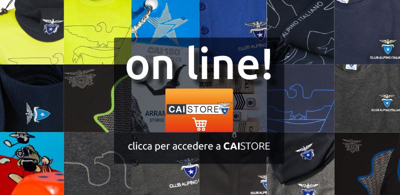 caistore_online